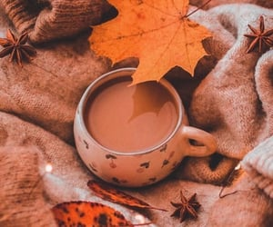 coffee, 🍂, and fall image