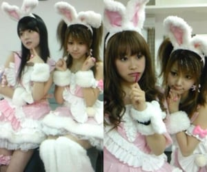 bunny, girls, and idol image