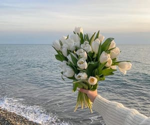 flowers, sea, and white image