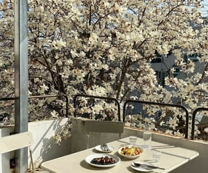 balcony, spring, and white image
