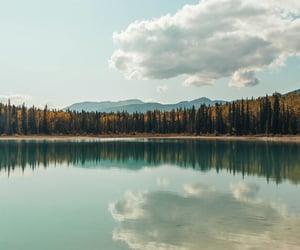 beach, lake, and natural image