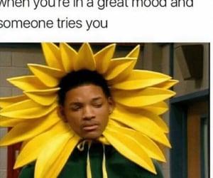 flower, haha, and same image
