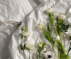 flowers and sheets image