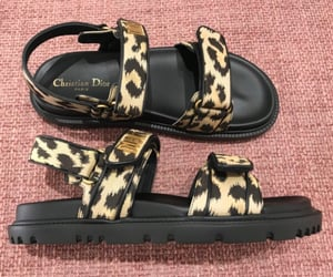 dior and sandals image