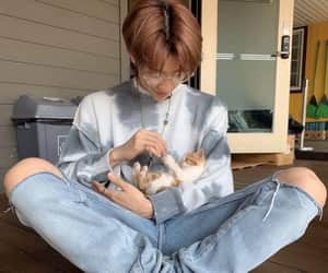 baby cat, idol, and Seventeen image