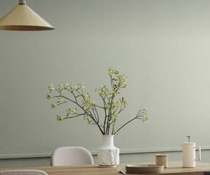 beige, green, and wallpaper image
