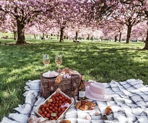 picnic, spring, and nature image