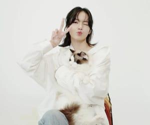 lisa, kpop, and lalisa manoban image