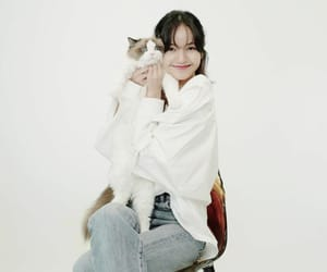 cats, blackpink, and kpop image