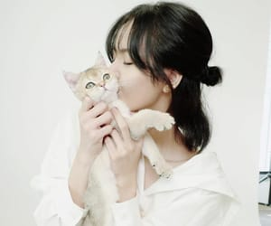 kpop, lalisa manoban, and cute image
