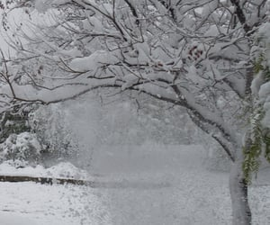 landscape, nature, and snow image