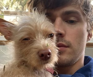 dog, miles heizer, and 13 reasons why image