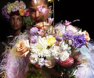 aesthetic, beauty, and girls image