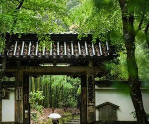 kyoto, shrine, and japán image
