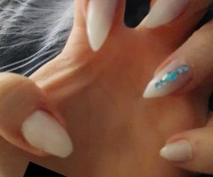claws, nails, and nail polish image