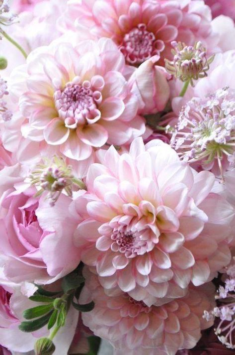 bouquet, flowers, and flower image