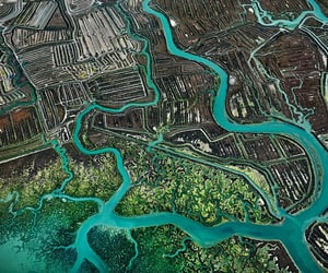 aerial photography, aerial view, and green image