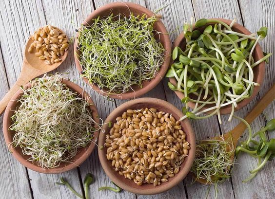 sprouts, health, and chia image