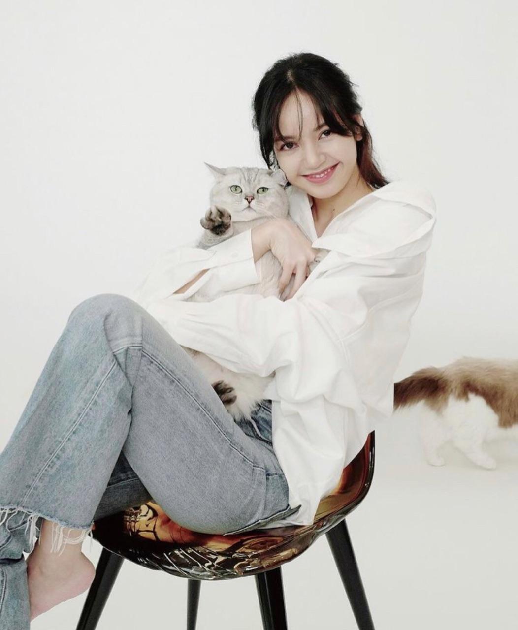 cat, lisa, and blackpink image