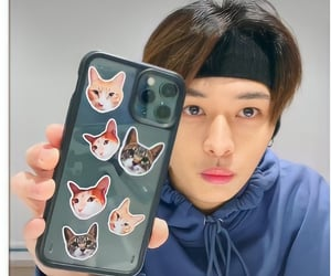 cat, lee know, and minho image