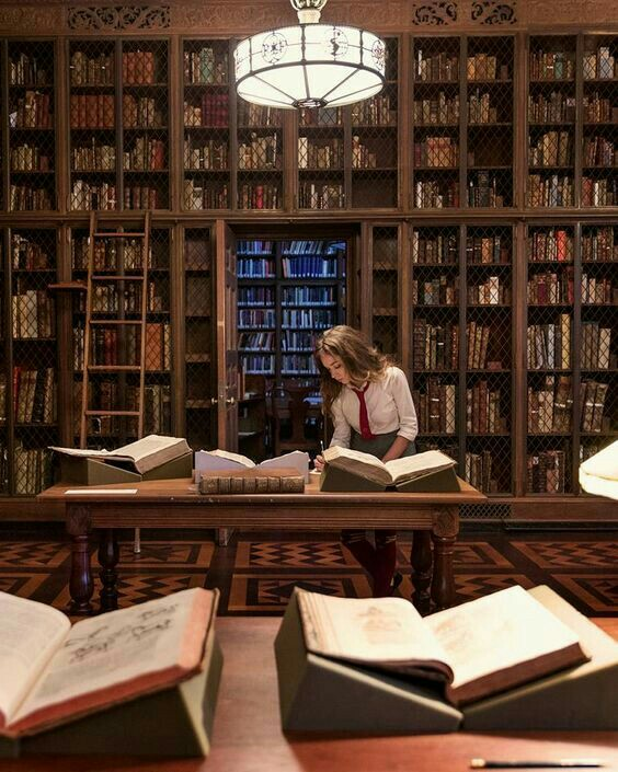 aesthetic, boarding school, and books image