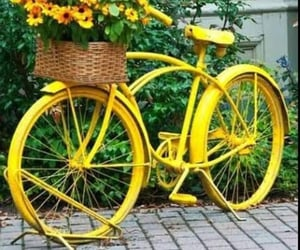 beautiful, bicycle, and girly image