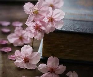 ღ Sweet Spring ღ