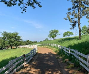 country living, driveway, and farm image