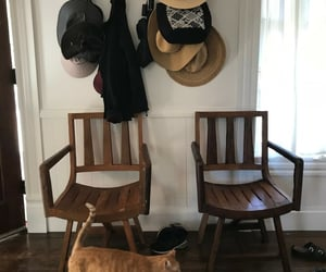 farmhouse style, cats, and decorating image