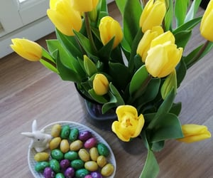 eggs, flowers, and tulips image