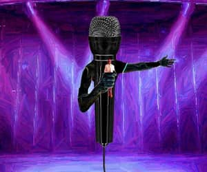 microphone, art, and storecee image