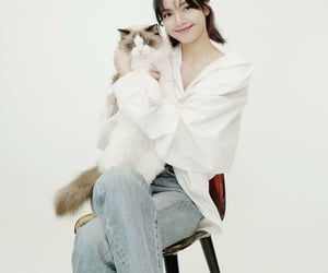 bp, cat, and doll image