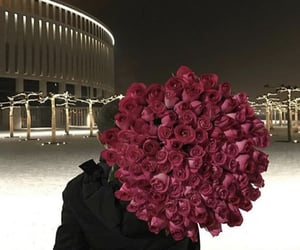 rose, flowers, and boy image