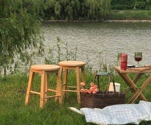 nature, aesthetic, and picnic image