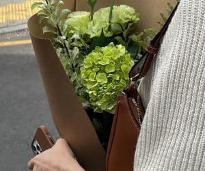 beautiful flowers green image