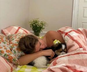animals, bedroom, and decor image