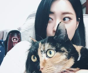 cat, 9muses, and park kyungri image