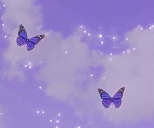 aesthetic, butterfly, and purple image