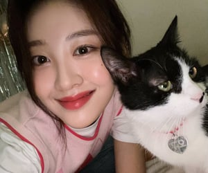 yves, loona, and cat image