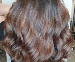 brown, Cinnamon, and colored image