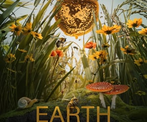 earth day, unique, and earthday image