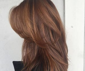 hairstyle, brown hair, and highlights image