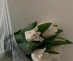 flowers, fashion, and lookbook image
