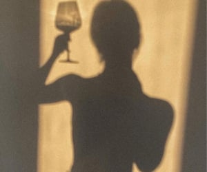 sun and wine image