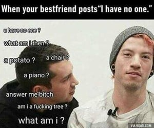 friend, meme, and tyler image