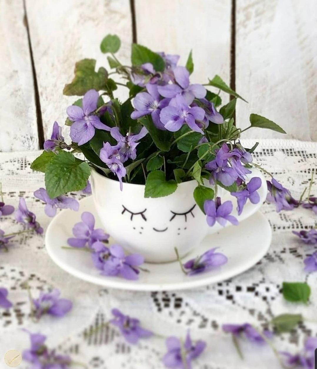 flores, belleza, and inspiracion image