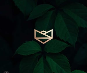 geometric, logo design, and minimal image