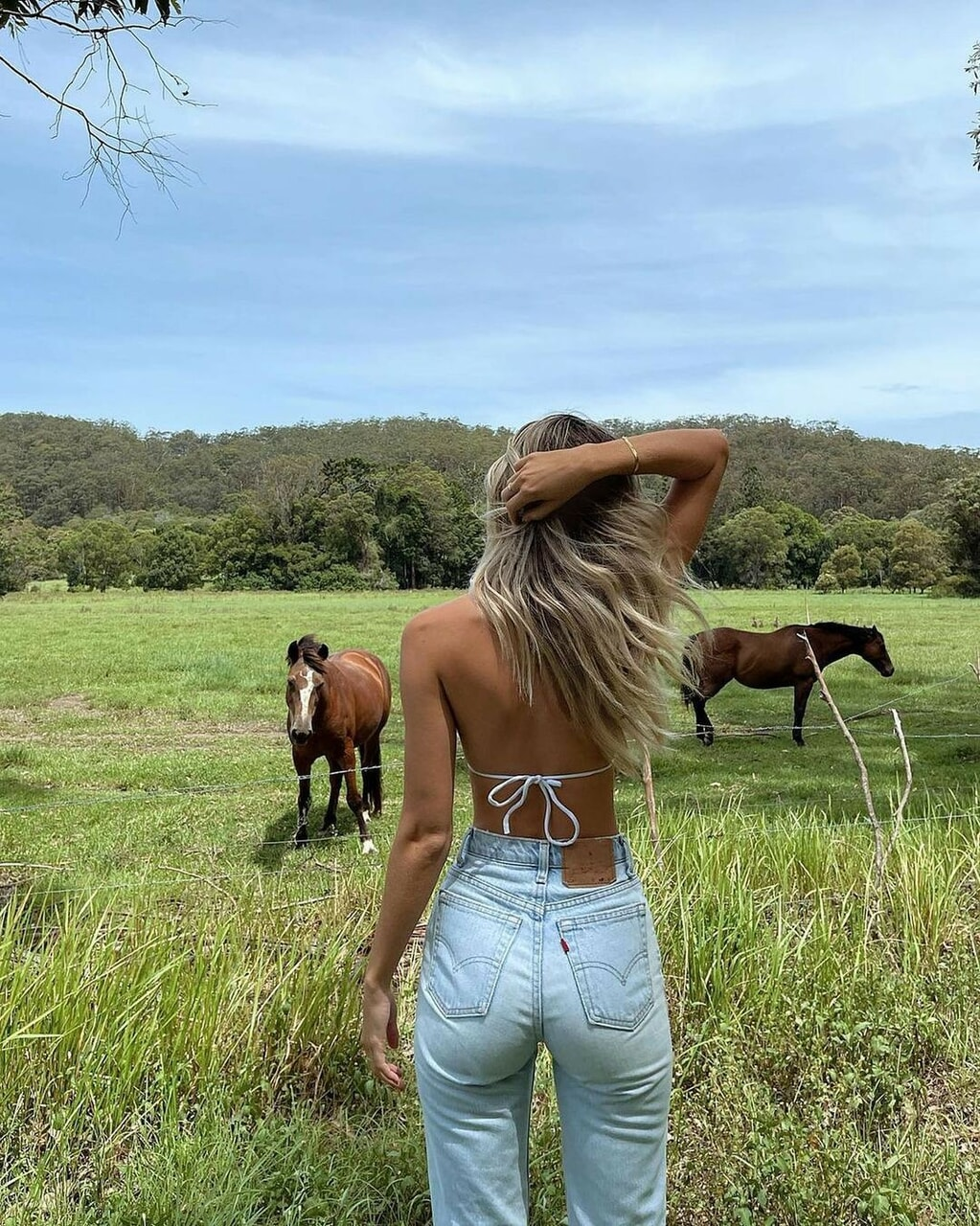 horse, nature, and spring image