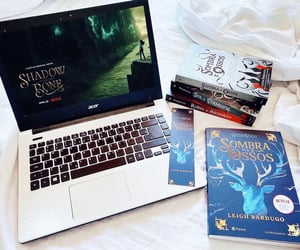 netflix, grisha, and books image