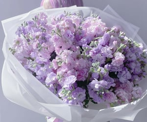beautiful, bouquet, and flowers image
